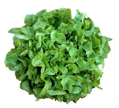 Rau bina (rau chân vịt) có chứa nhiều lutein và zeaxanthin